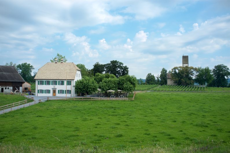 Ruoss Ufnau _Haus zu den zwei Raben_ mit Kirche St. Peter und Paul